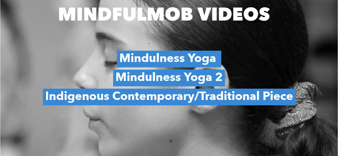 mindfulmobvids2